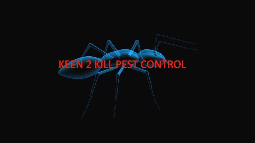 Keen 2 Kill Pest Control Mackay